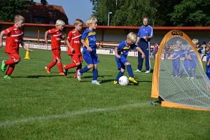 Turnier G-Junioren 29.08.15